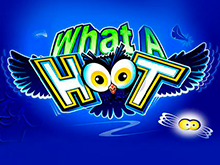 What A Hoot от Microgaming – аппарат с выигрышами